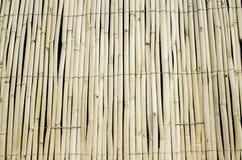 Bambo sticks Stock Photography