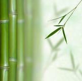Bamboe Royalty-vrije Stock Afbeeldingen