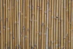 Bamboe royalty-vrije stock afbeelding