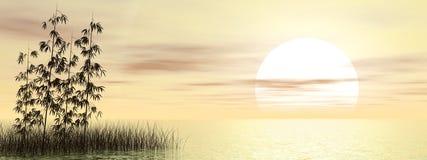 Bamboe door 3D zonsondergang - geef terug Royalty-vrije Stock Foto