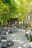 Bamboe in een kalme tuin royalty-vrije stock foto's