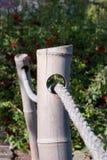 Bamboe en kabelomheining/traliewerk royalty-vrije stock foto's