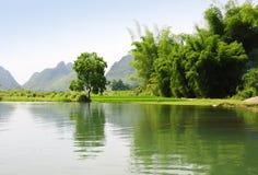 Bamboe en rivier Stock Fotografie
