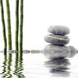 Bamboe en steen Royalty-vrije Stock Foto's