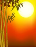 Bamboe en zonsondergangachtergrond stock illustratie