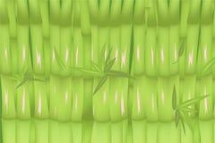 Bamboe Forest Green Background Design Vector Royalty-vrije Stock Afbeeldingen