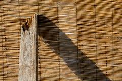 Bamboe geel bruin patroon met een stuk van hout Royalty-vrije Stock Fotografie