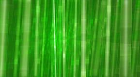 Bamboe groene dromerige kleurrijke achtergrond Stock Afbeelding