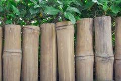 Bamboe houten omheining met groen blad Stock Afbeelding