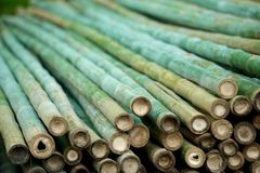 Bamboe materiële stapel Stock Afbeelding