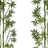Bamboe naadloos verticaal patroon Stock Fotografie