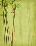 Bamboe op oud grunge antiek document Royalty-vrije Stock Foto's