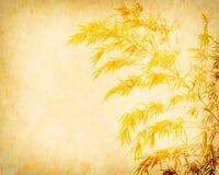 Bamboe op oud grungedocument Stock Fotografie