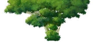 Bamboe op over met achtergrond Vector Illustratie