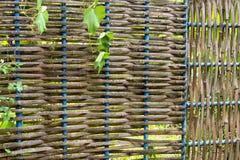 Bamboe rieten omheining royalty-vrije stock foto