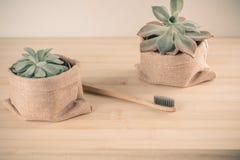 Bamboe toothbrushand succulente installatie stock afbeeldingen