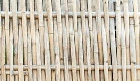 Bamboe van patroonontwerp Royalty-vrije Stock Foto