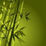 Bamboe, vector Stock Afbeelding