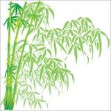 Bamboe vectorillustratie als achtergrond Stock Foto