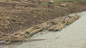 Bamboe, vlotters, Kambodja, Zuidoost-Azië stock footage