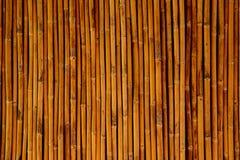 Bamboe voor achtergrondtextuur Stock Foto's