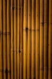 Bamboeachtergrond Stock Afbeeldingen