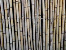 Bamboeachtergrond of patronen royalty-vrije stock afbeeldingen