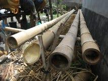 Bamboeboomstammen Natuurlijk bamboe royalty-vrije stock foto