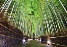 Bamboebos royalty-vrije stock afbeeldingen