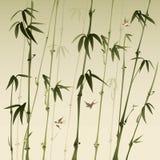 Bamboebos Royalty-vrije Stock Afbeelding