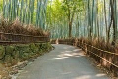 Bamboebosje in Arashiyama in Kyoto Stock Afbeelding