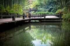 Bamboebruggen Stock Afbeeldingen