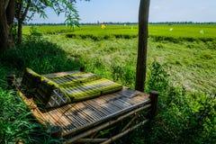Bamboedraagstoel in padieveld stock foto
