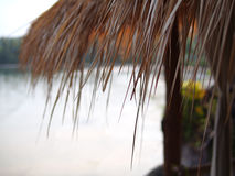 Bamboehut Royalty-vrije Stock Foto's