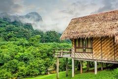 Bamboehut en bosheuvel Stock Afbeelding