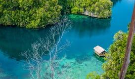 Bamboehut in Mangrove dichtbij Warikaf-Homestay, Kabui-Baai en Passage Gam Island, het Westen Papuan, Raja Ampat, Indonesië Stock Afbeelding