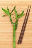 Bamboeinstallatie en eetstokjes royalty-vrije stock afbeelding