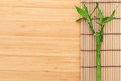 Bamboeinstallatie en mat Royalty-vrije Stock Foto