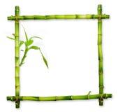 Bamboekader van geïsoleerde die stammen wordt gemaakt Royalty-vrije Stock Afbeeldingen