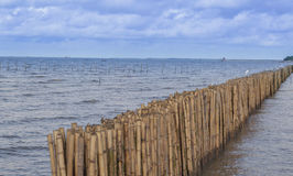 Bamboemuur langs de lengte van het overzees en de hemel stock afbeeldingen