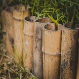Bamboeomheining, tuinornamenten stock afbeeldingen