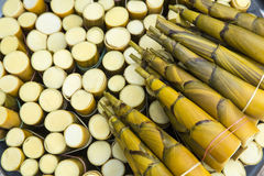 Bamboespruiten Stock Fotografie