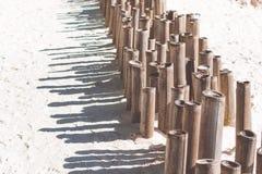 Bamboestokken op het strand met wit zand Stock Fotografie