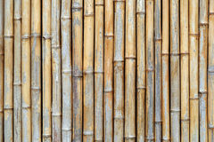 Bamboetextuur Stock Foto's