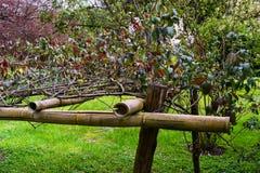 Bamboeverbinding in de tuin Royalty-vrije Stock Foto