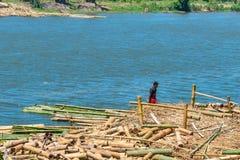 Bamboevlot in de rivier, Madagascar wordt geparkeerd dat Royalty-vrije Stock Afbeelding