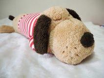 Bambola del cane di sonno su un letto Fotografia Stock Libera da Diritti