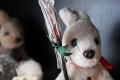 Bambola del canguro dell'Australia Fotografia Stock