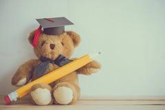 Bambola dell'orsacchiotto con il cappello e la matita di graduazione sul BAC bianco della parete Fotografia Stock