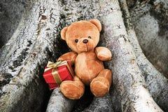 Bambola dell'orso Immagini Stock